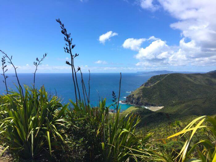 Neuseeland Reiseroute - Cape Reinga